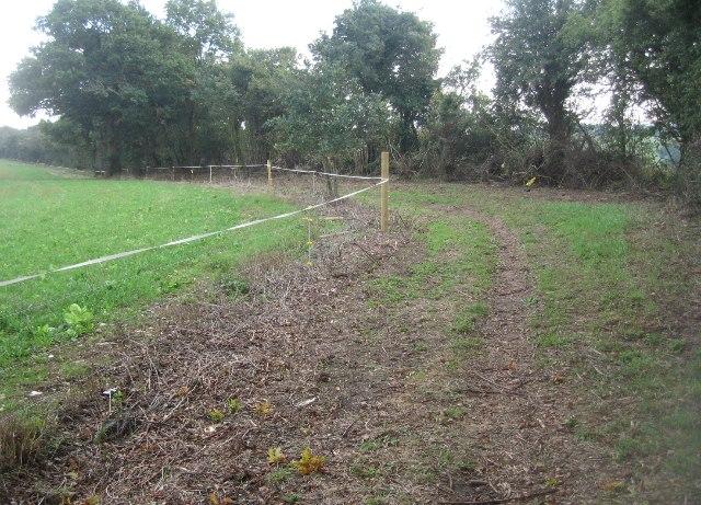 Bridleway & hedgerow maintenance