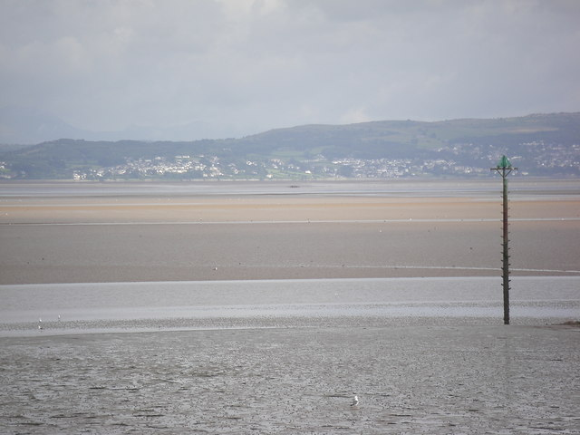 Perch and lots of mud, Morecambe