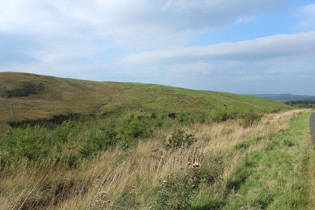 Meikle Hill