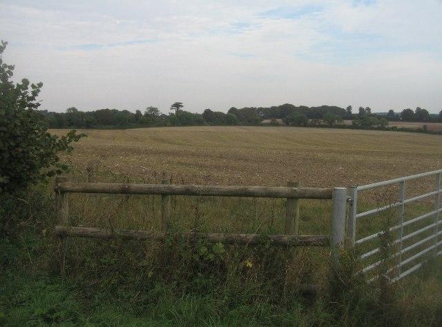 Fields east of Hook Lane