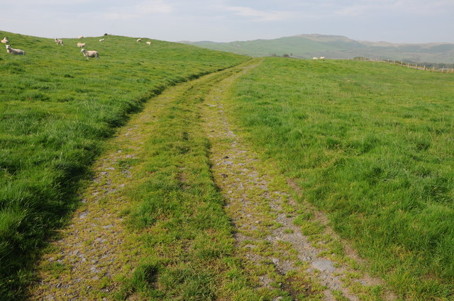 Track and bridleway near Llyn Mawr