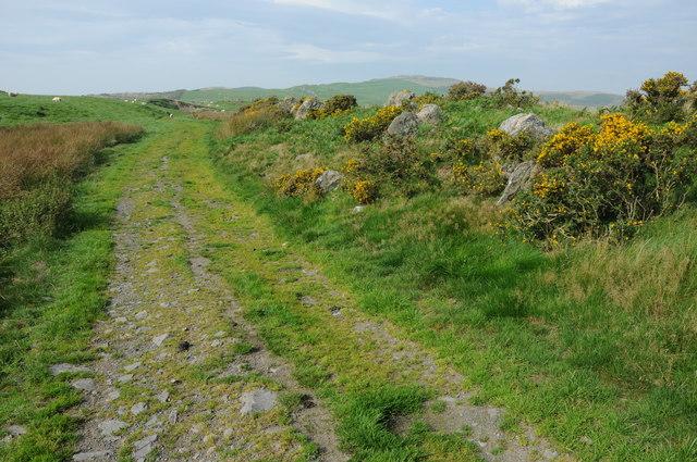 Track between Llyn Du and Llyn Mawr