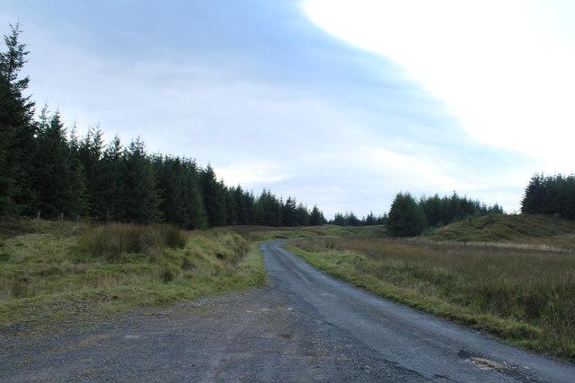 Road to Glentrool near Palmullan Bridge