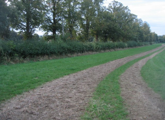 The gallop has been sprayed