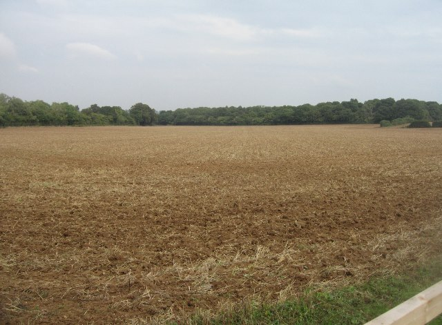 Lower Field (29.5 acres)