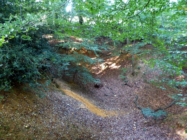 Cholesbury Camp (9) - Remains of small quarry (north)