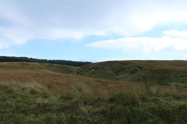Moorland at Ferly Burn