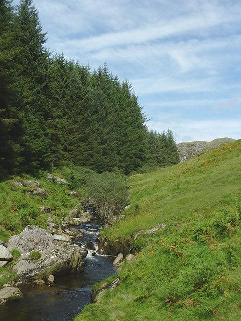 Afon Irfon and forest west of  Bryn Du, Powys