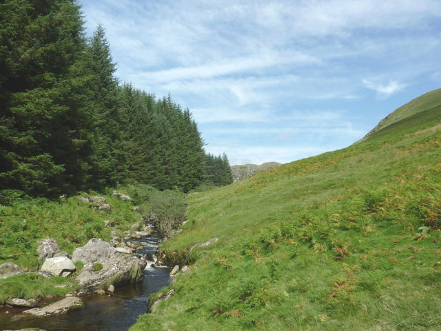 Forest, river and moorland by Bryn Du, Powys
