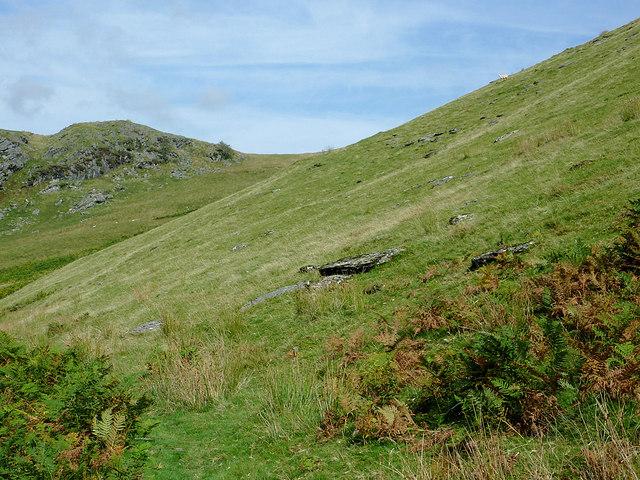 Moorland slopes of Bryn Du, Powys
