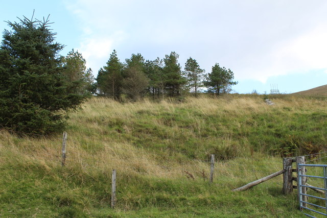 Moorland & Woodland near Pinbreck Hill