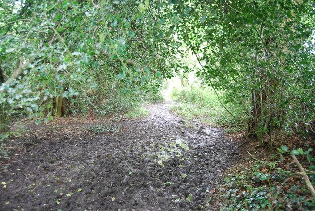 Muddy footpath, Broke's Wood