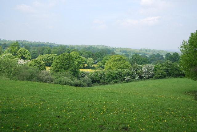 Countryside near Southborough