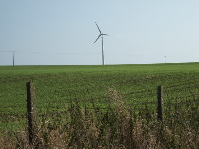 Crop field and wind turbines