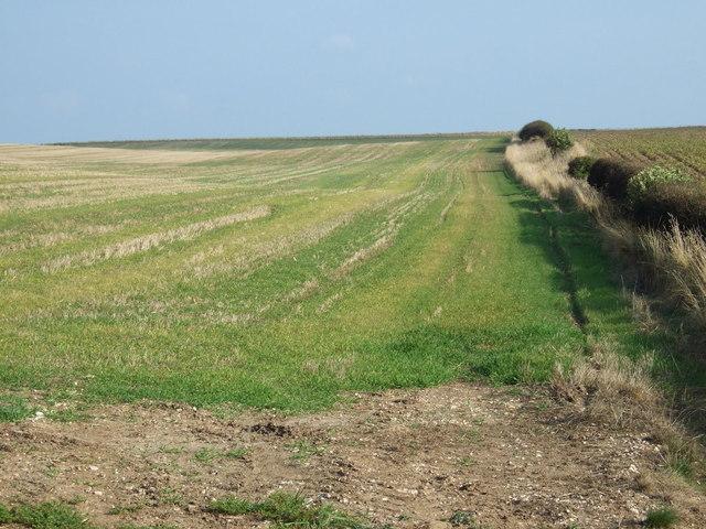 Farmland, Metlow Hill