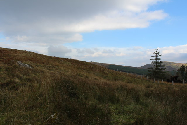 Moorland on Craiganheather