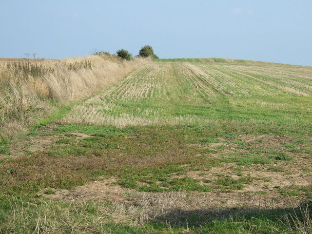 Farmland, Metlow Hill