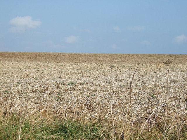 Farmland, Blakehowe