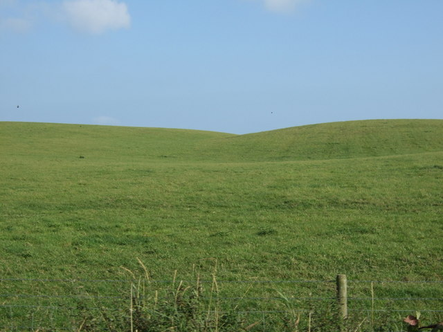 Grazing north of Blakehowe Lane