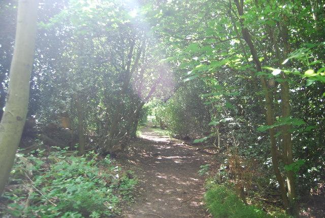 Tunbridge Wells Circular Walk