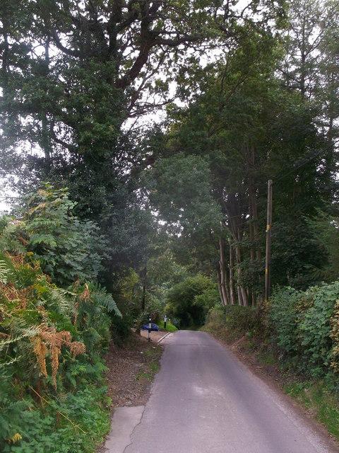 Pell Hill