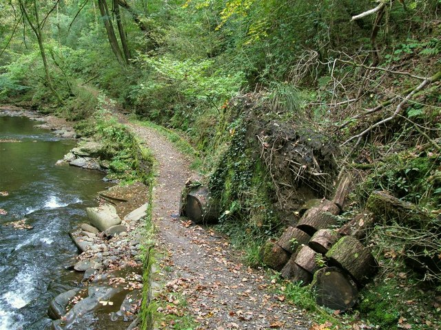 Path and fallen tree in Cwm Du Glen