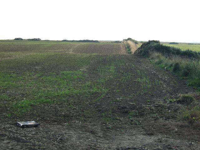 Farmland east of Cliff Lane