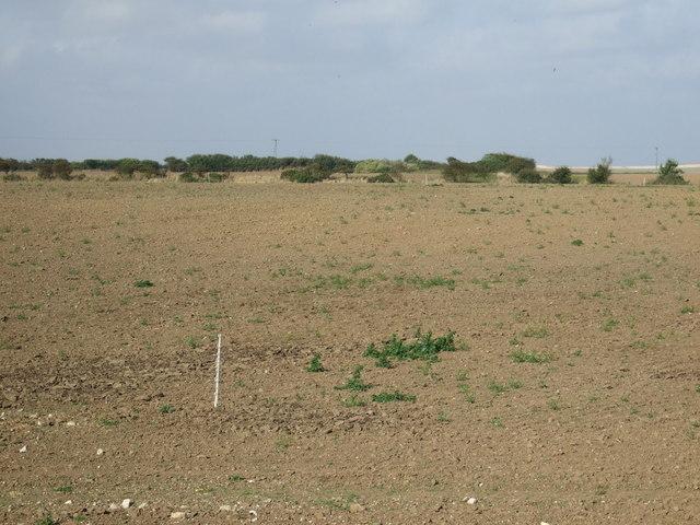 Farmland off Cliff Lane