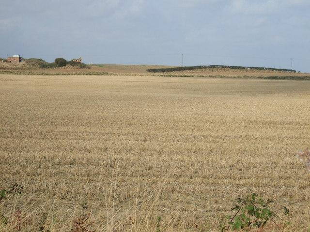 Farmland west of Cliff Lane