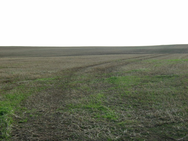 Farmland east of Cliff Lane