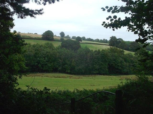 View from footpath near Blacksmiths Lane