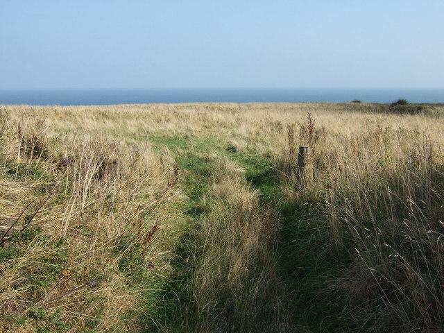 Track near RSPB Bempton Cliffs