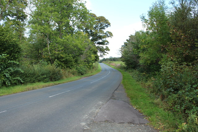 Road to Dailly near Weavers Wood