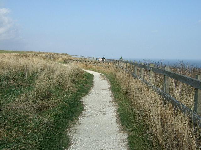 Headland Way path, Bempton Cliffs
