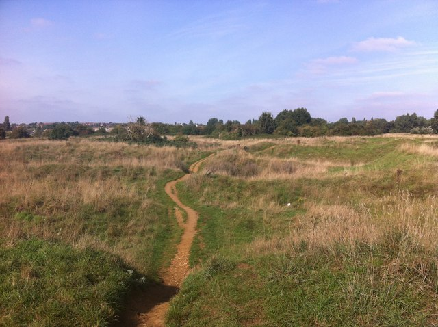 Bradlaugh Fields