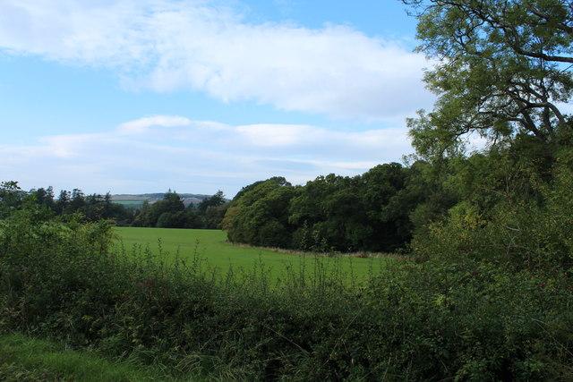Farmland & Woodland at Bargany Estate