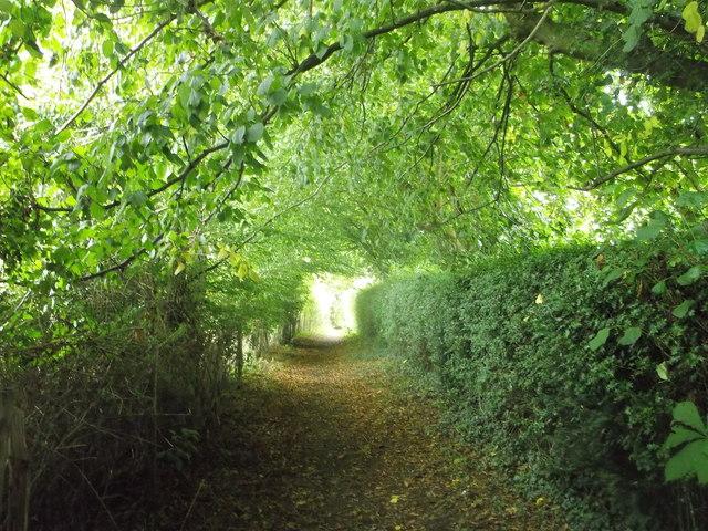 Footpath to Blacksmiths Lane