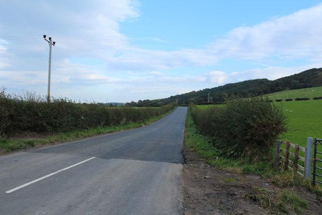 Road to Dailly near Killoup Wood