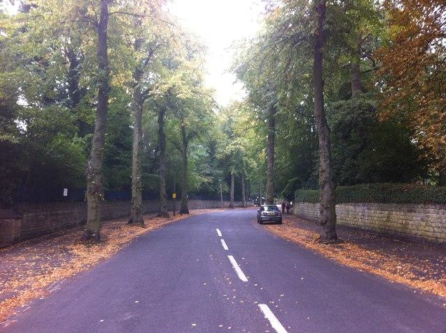 Kenwood Road