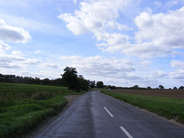 Holly Lane, Horsford
