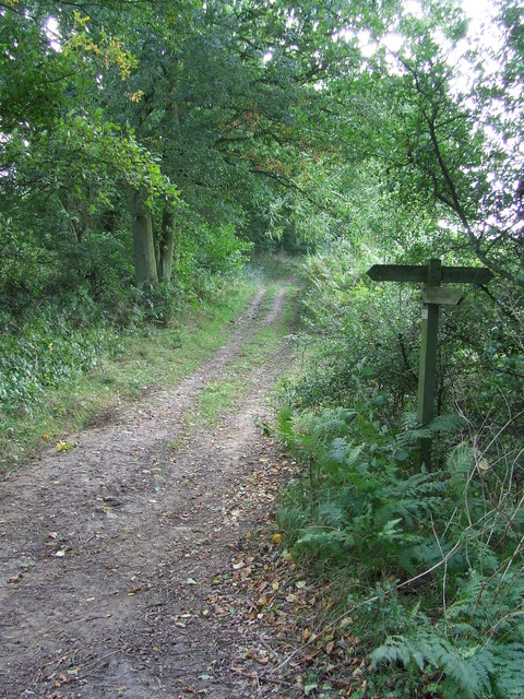 Pond Hall Lane