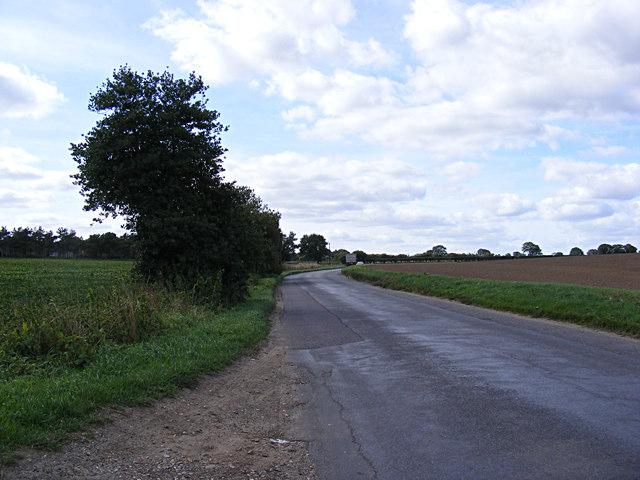 Holly Lane, Horsford