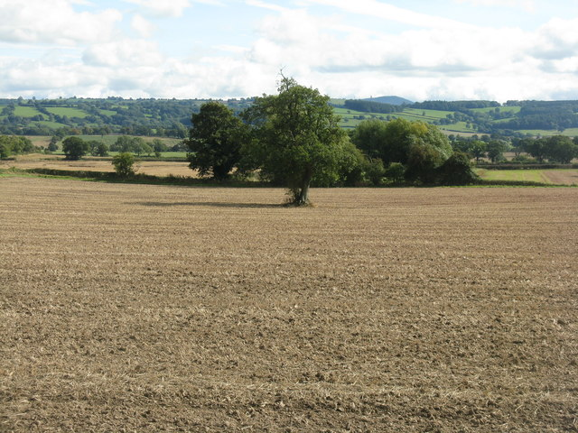 Newly ploughed field at Aston Munslow