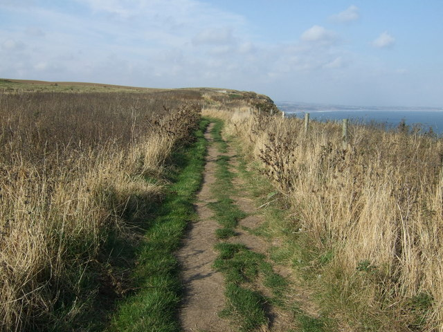 Headland Way path, Bempton Cliffs