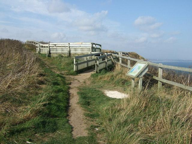 Viewing platform, RSPB Bempton Cliffs