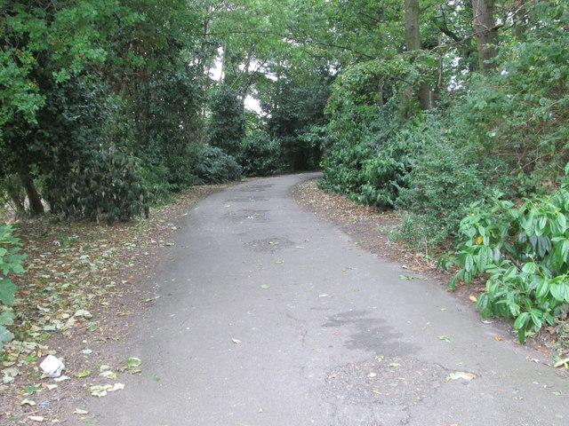 Footpath - at start of Ledger Lane