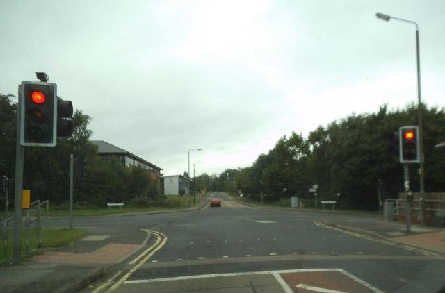 Racecourse Road Lights
