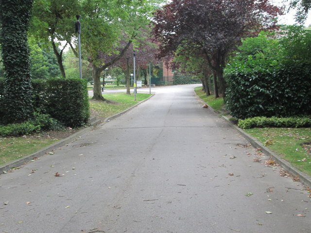 Footpath - Ledger Lane