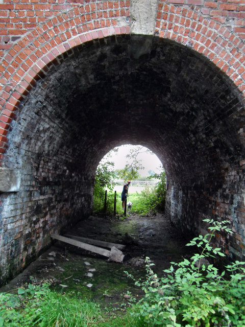 Tunnel leading from nature area