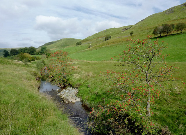 Afon Tywi north of Dolgoch, Ceredigion